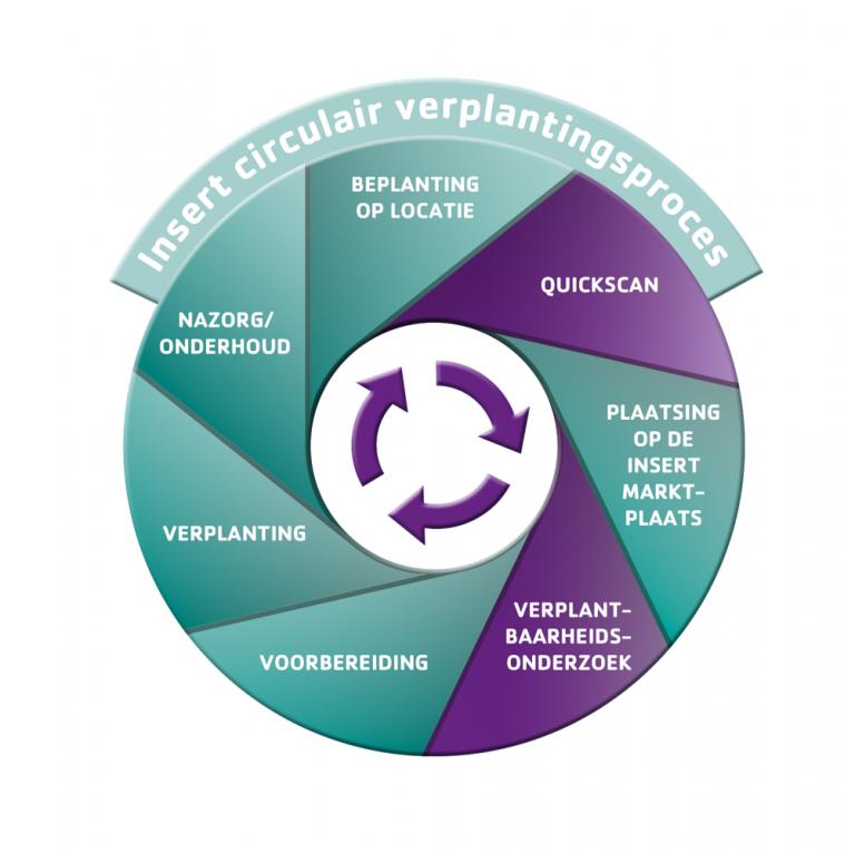 Verplantingsproces