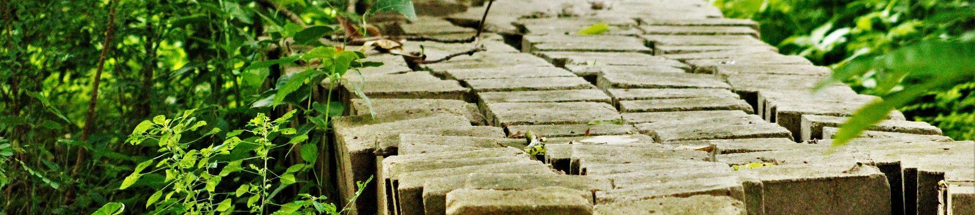 Sectoren - bouw - groen - civiel